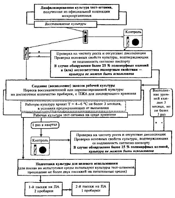 Схема ведения культур тестовых
