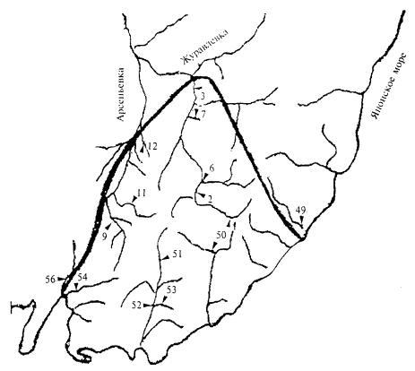 СП 33-101-2003 Определение