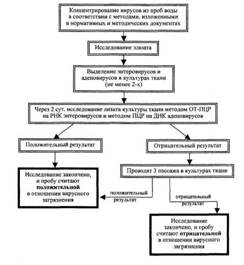 Схема вирусологического
