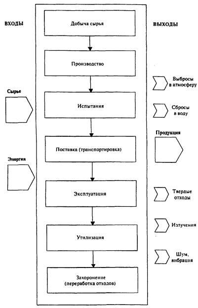 Рисунок 2 - Схема жизненного