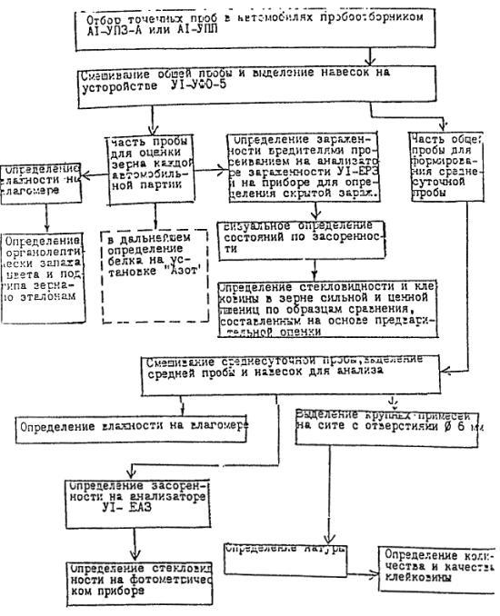 Примерная схема анализа зерна
